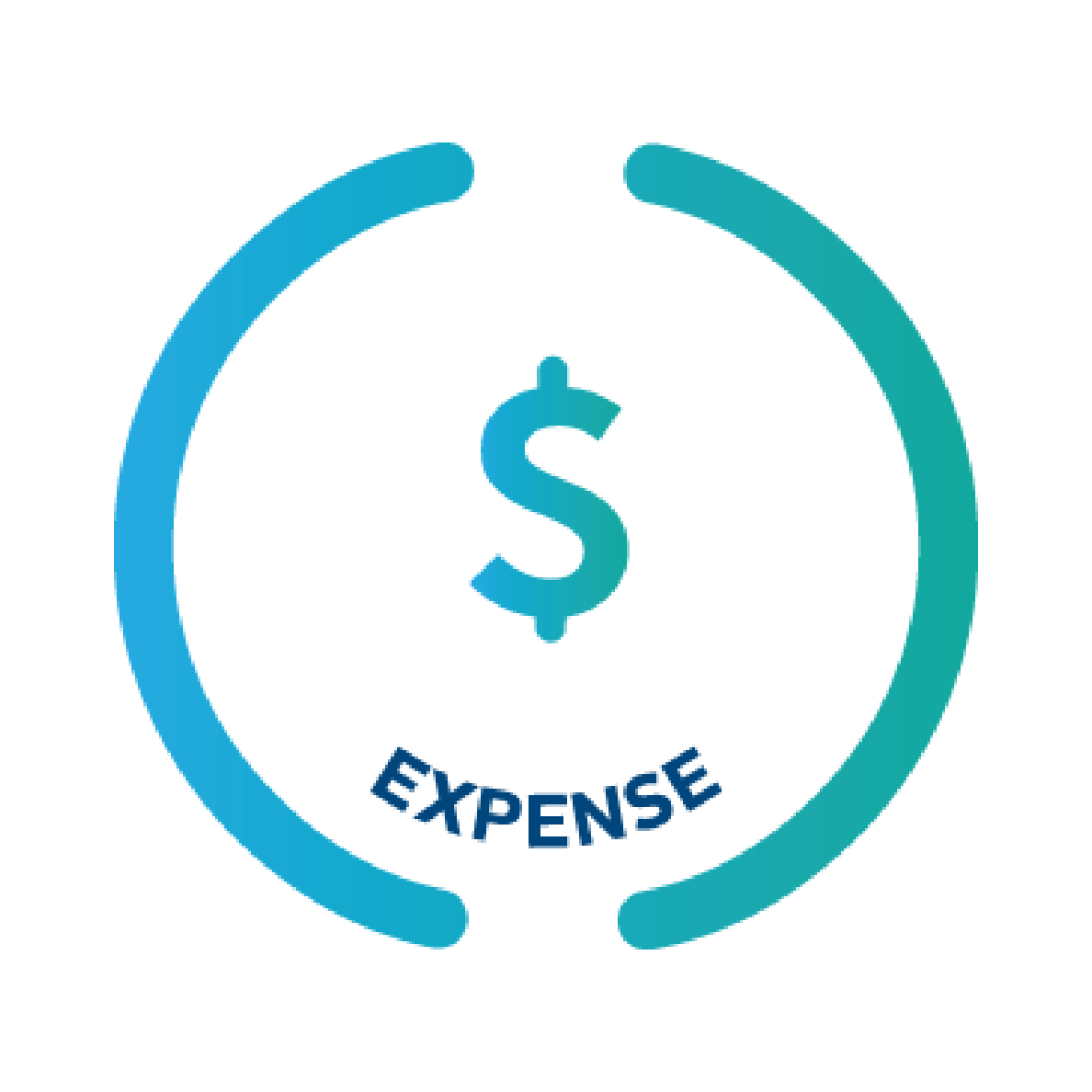 Expense Icon Large